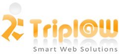 TriplaW copy e blogging